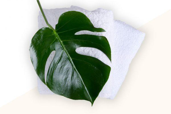 foglia con asciugamani